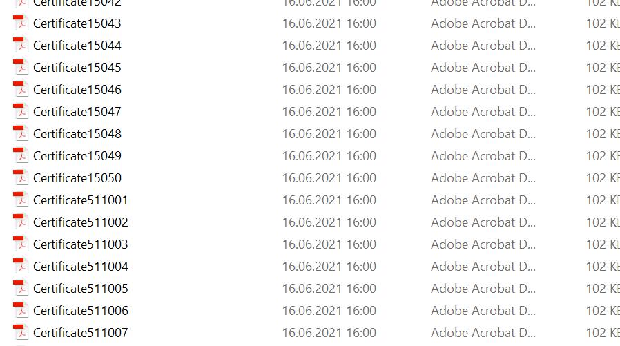 adobe1.png