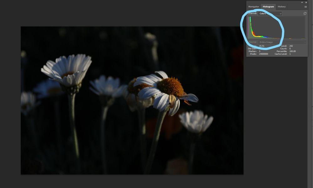 InkedScreenshot 2021-06-28 090030_LI.jpg
