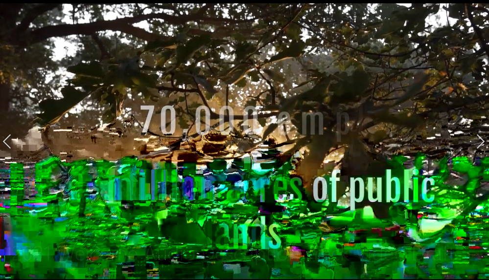 Pixellate Video.PNG