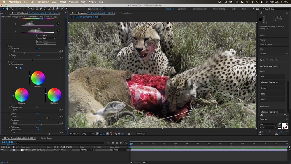 Color Correct.png