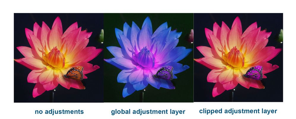 flower global vs clipped adjustement.jpg