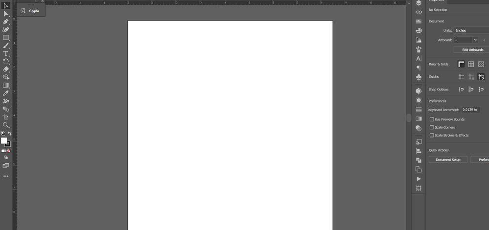 Illustrator Normal View.jpg