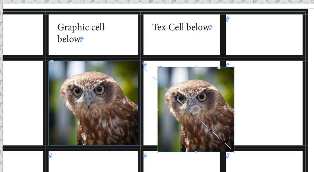GraphicCell-vs-TextCell-with-Images.PNG