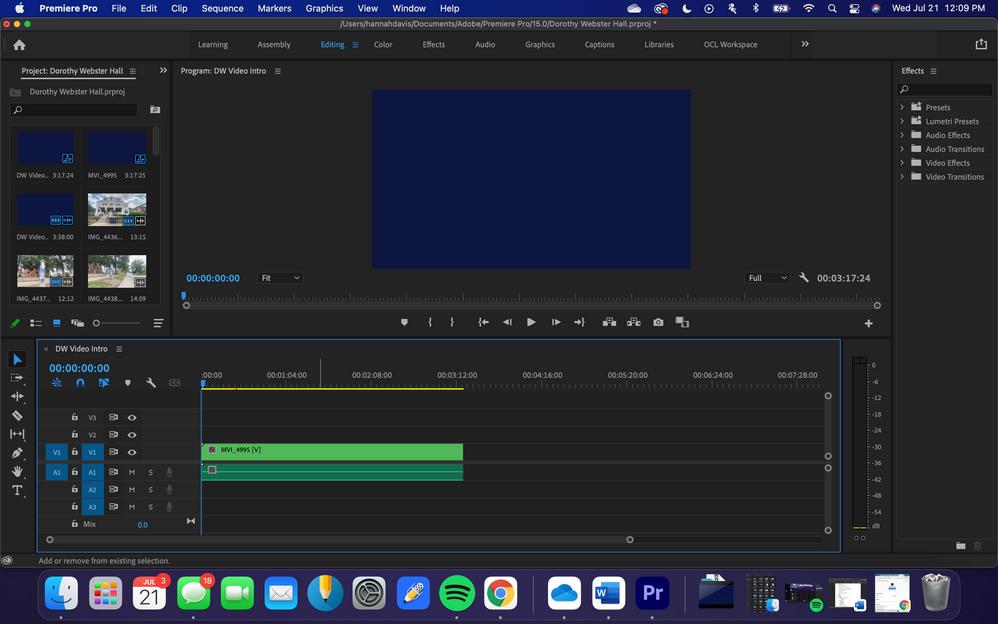 Screen Shot 2021-07-21 at 12.09.01 PM.png