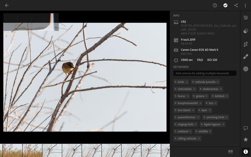 Screenshot_20191122-202229_Lightroom.jpg