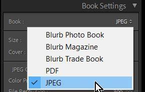 2021-07-26 10_25_45-Lightroom Catalog-v10 - Adobe Photoshop Lightroom Classic - Book.jpg