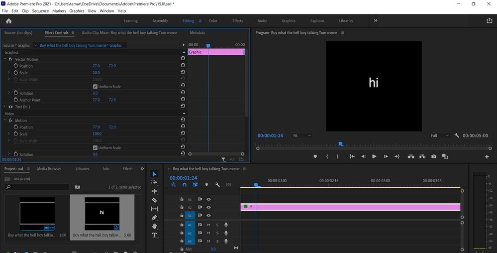 Adobe Premiere Pro 2021 - C__Users_tamar_OneDrive_Documents_Adobe_Premiere Pro_15.0_asd _ 7_26_2021 11_46_30 AM.png