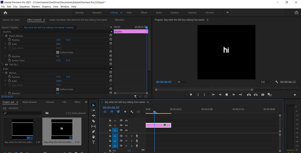 Adobe Premiere Pro 2021 - C__Users_tamar_OneDrive_Documents_Adobe_Premiere Pro_15.0_asd _ 7_26_2021 11_46_42 AM.png