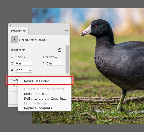 Photoshop-Linked-Smart-Object-Reveal-in-Finder.jpg