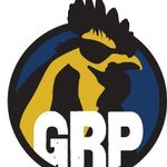 GrittyRooster