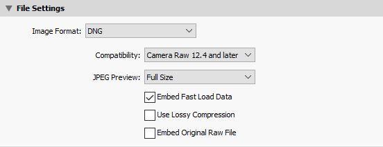 dng-file-settings.JPG