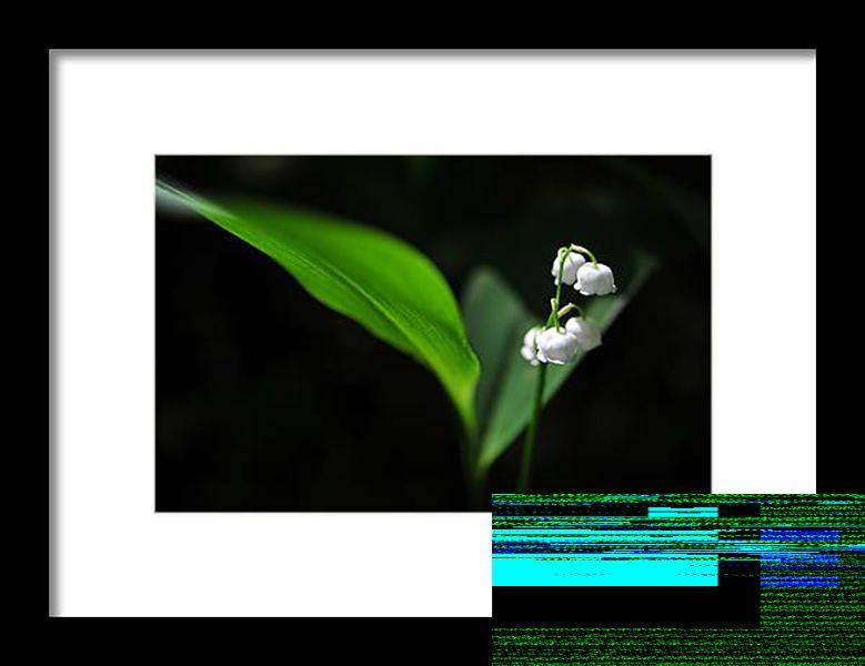 Pixelated.jpg