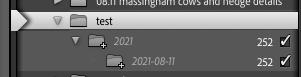 Screenshot 2021-08-11 at 10.19.40.png