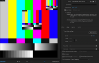 Screen Shot 2021-08-17 at 10.58.38 AM.png
