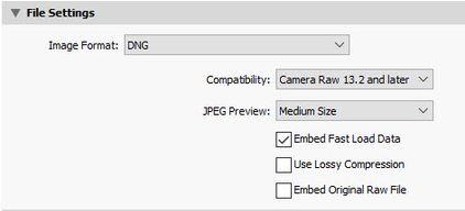 Export DNG.jpg