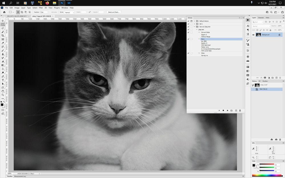 Screenshot-(257).jpg