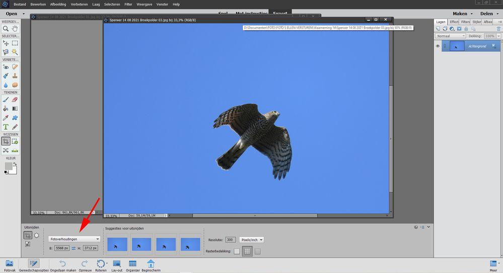 Photoshop instelling 3.jpg
