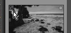 2021-09-04 09_54_33-Lightroom Catalog-v10 - Adobe Photoshop Lightroom Classic - Library.jpg