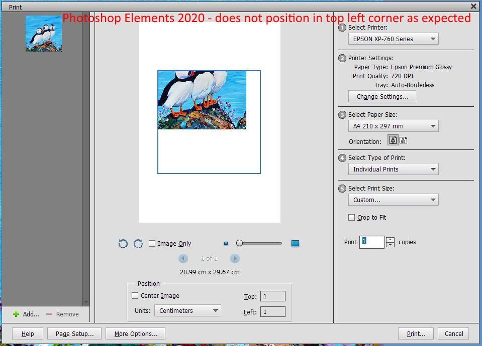 Elements 2020.JPG