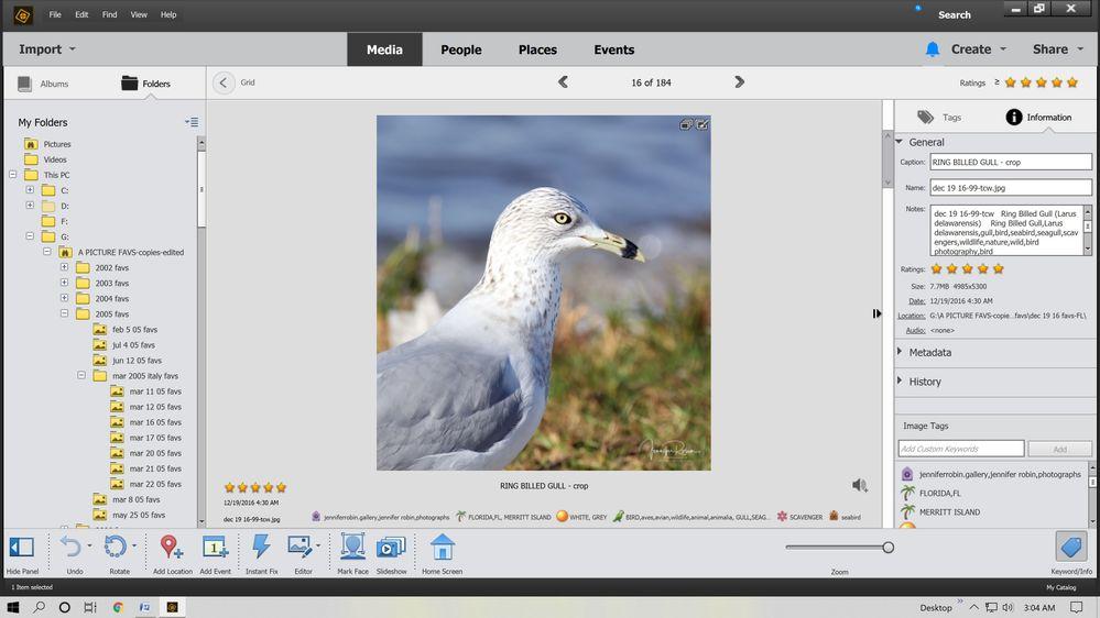ps catalog 1.jpg