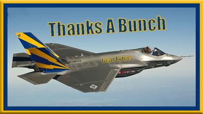 F35-Jet-BearHead-NoMarkingsOnPlane-ThanksABunch-X50.png