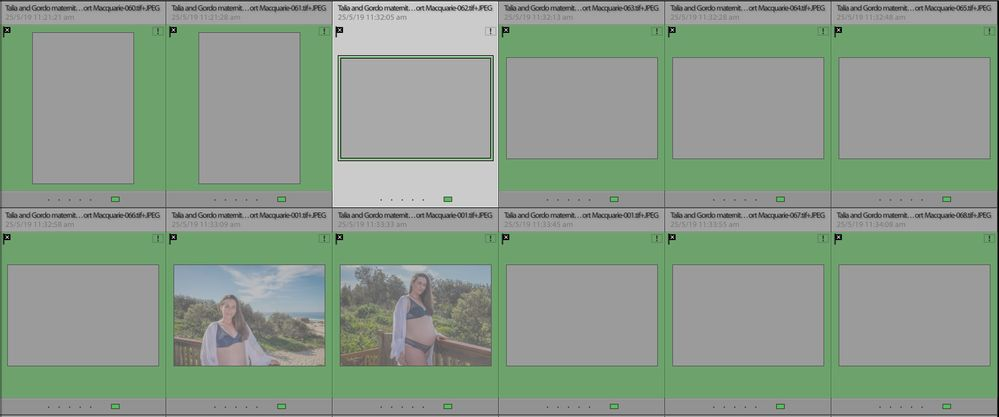 Screen Shot 2020-01-02 at 12.36.30 pm.jpg