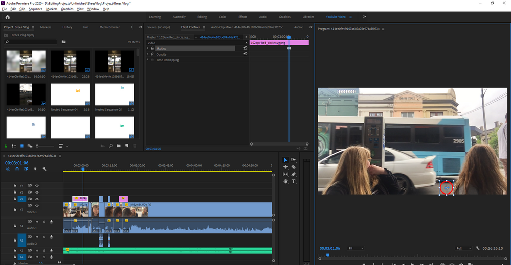 Adobe Premiere Pro 2020 - D__EditingProjects_Unfinished_BreesVlog_Project_Brees Vlog _ 8_01_2020 8_14_56 AM.png