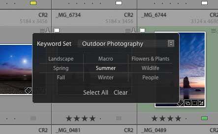 Painter-tool-with-keyword-set.jpg