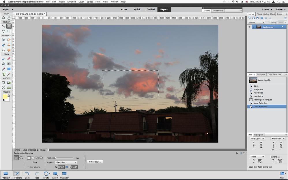 Screen Shot 2020-01-23 at 4.03.21 AM.png