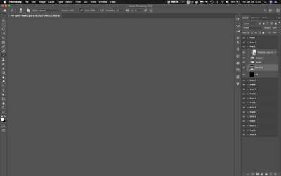 Screen Shot 2020-01-24 at 11.33.22 AM.png