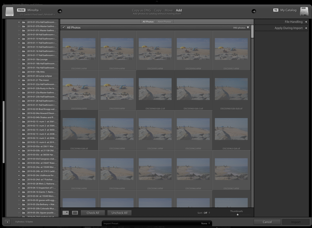 Adobe Lightroom Import screenshot with 2 tones of grayed-out images.