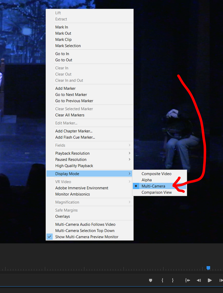 display mode is set to multicam
