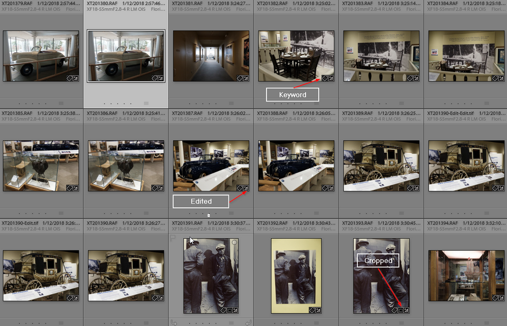 2020-02-05 19_40_40-LR Classic V9 Catalog - Adobe Photoshop Lightroom Classic - Library.png