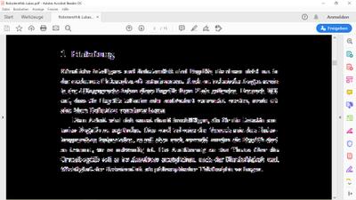 PDF Fehler.png