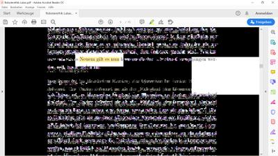 PDF Fehler2.png