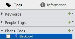2020 tag icon