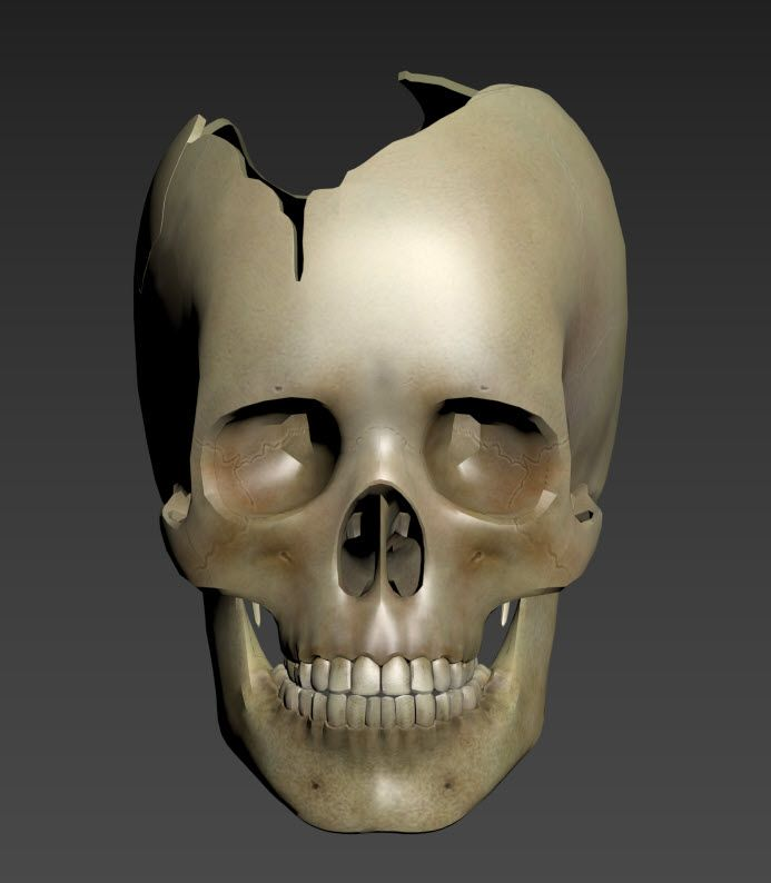 Front View to be Subjected to Virtual X-Rays