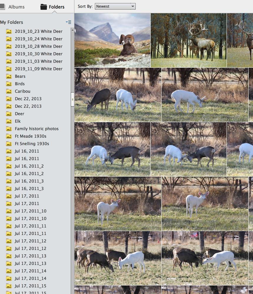 Screen Shot 2020-02-15 at 7.19.30 PM.png