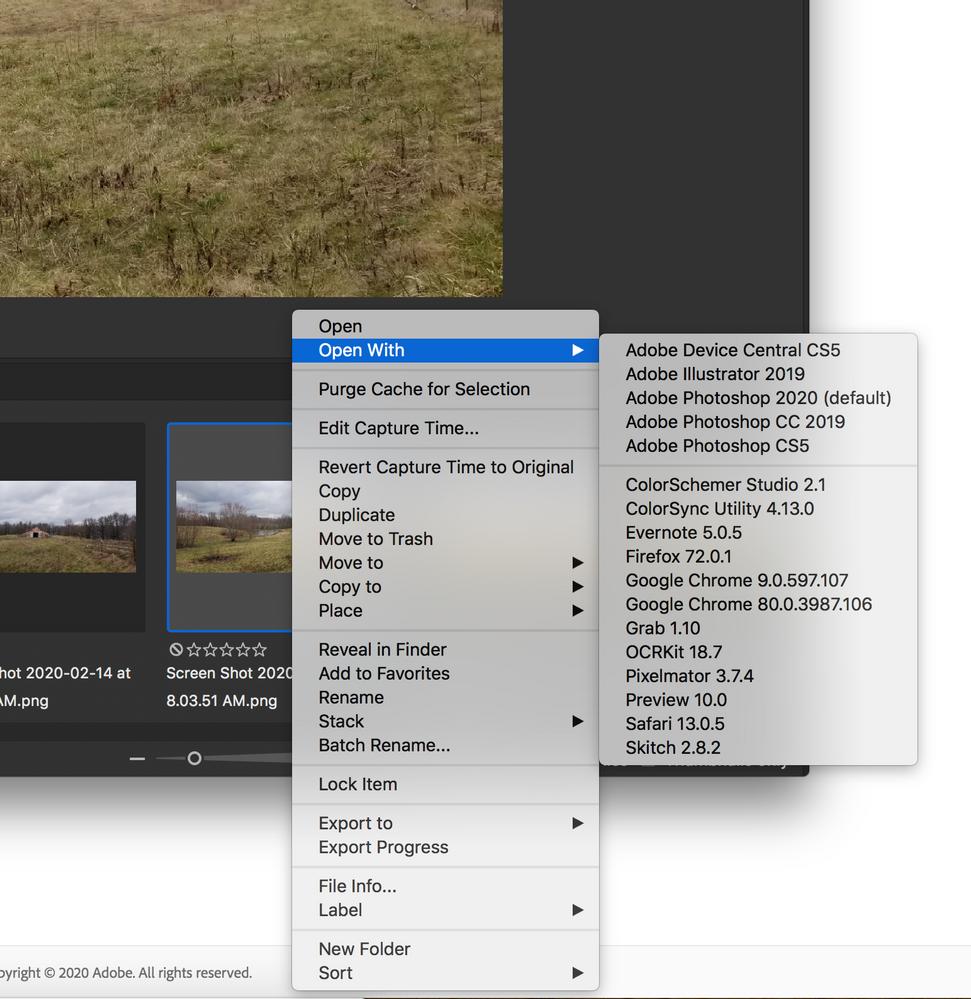 Screen Shot 2020-02-17 at 10.08.38 AM.png