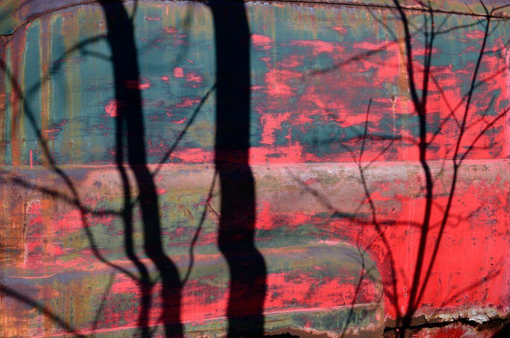 266 Tree shadows.jpg