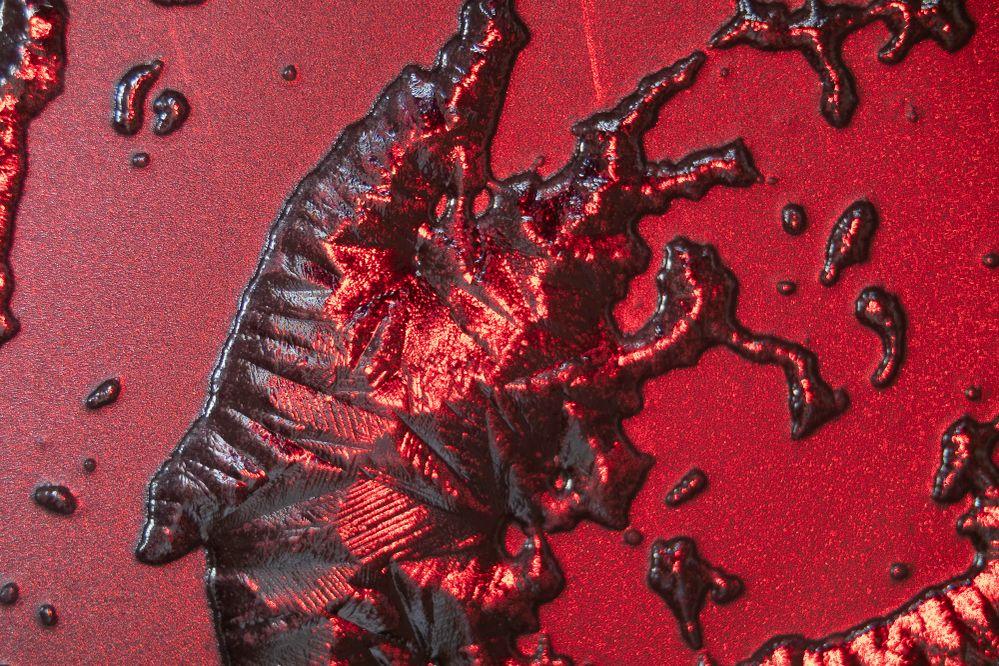 200323-corona macro-3702.jpg