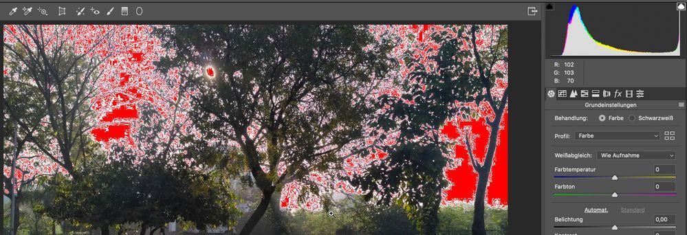 PhotoshopScreenSnapz029.jpg
