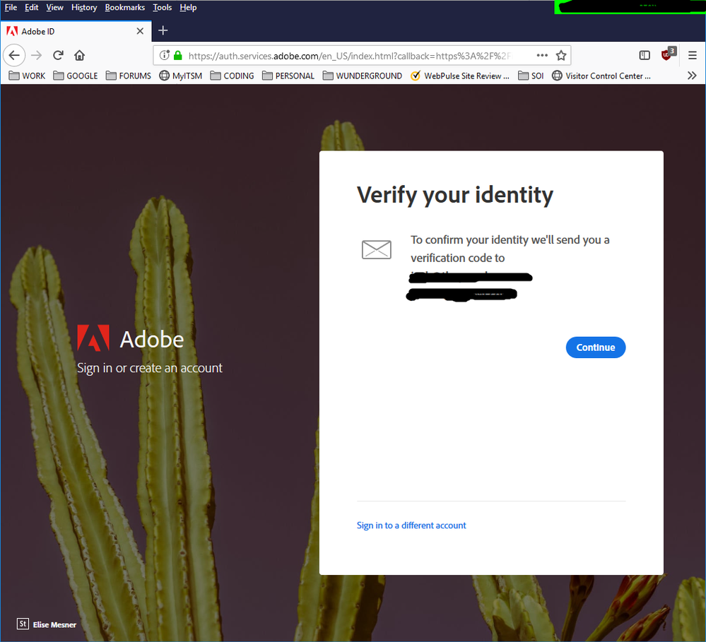 AdobeBSverification.png