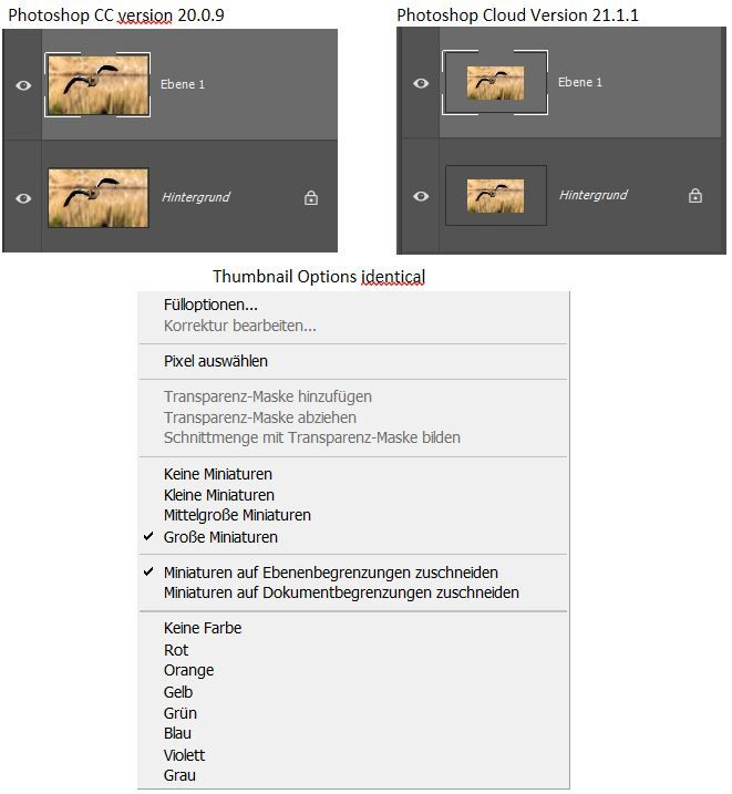 different thumbnail size in layer panel.jpg