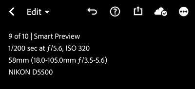 4CFFD793-D121-4575-99BC-70F75DE52DE0.jpeg