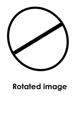 rotated-image.png