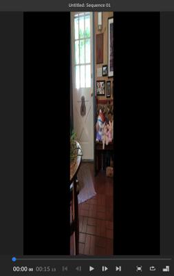 Screen Shot 2020-04-10 at 3.21.32 PM.png