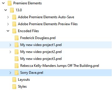 premiere elements folder.png