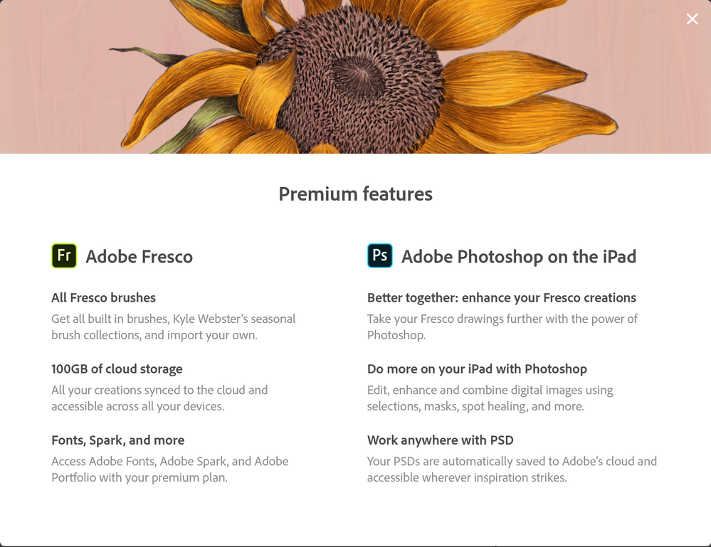 premium features PS on ipad.PNG
