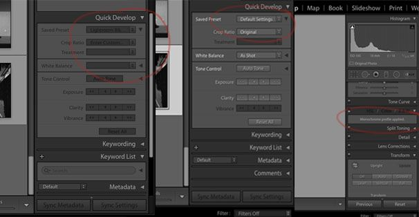 Screen Shots_B+W LR - How to change the preset.jpg